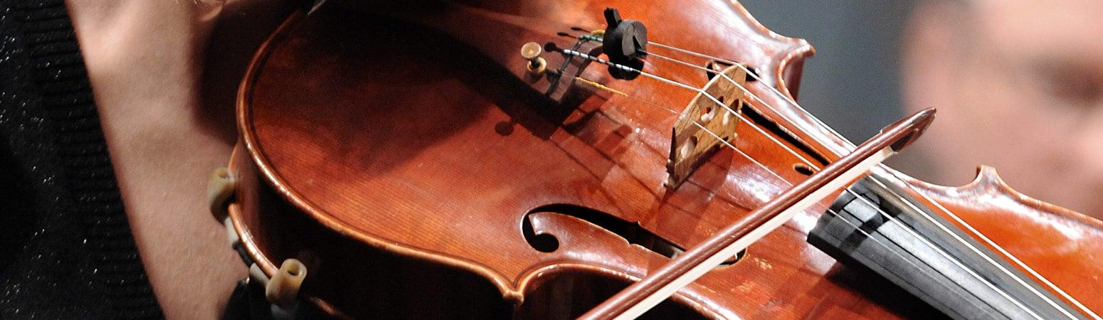 Bild på fiol