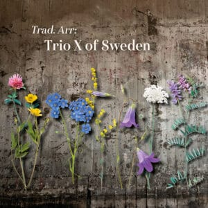 Trio X CD Trad. Arr